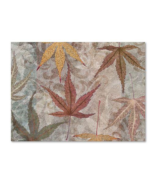 "Trademark Global Cora Niele 'Autumn Leaves Maple' Canvas Art - 19"" x 14"" x 2"""