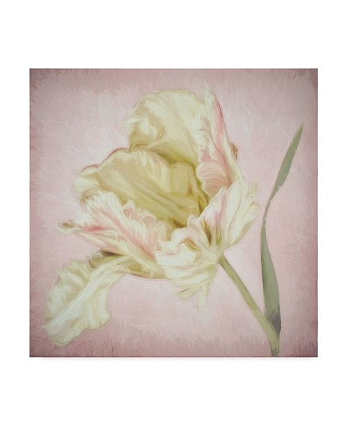 """Trademark Global Cora Niele 'Pink Parrot Tulip Painting I' Canvas Art - 18"""" x 18"""" x 2"""""""