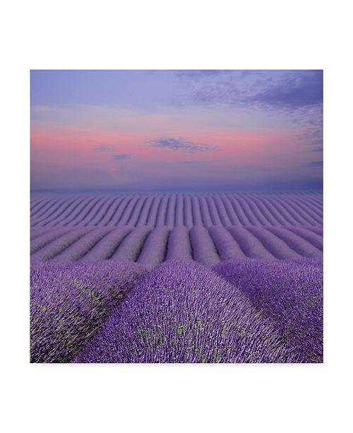 "Trademark Global Cora Niele 'Lavender Field At Dusk' Canvas Art - 14"" x 14"" x 2"""