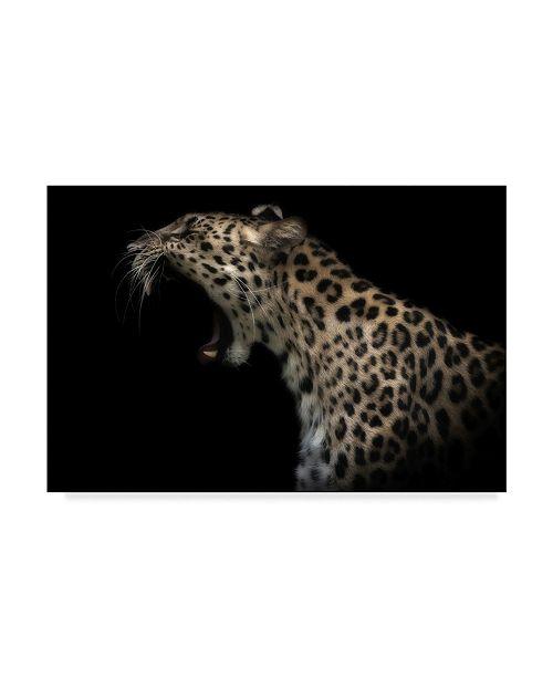 "Trademark Global David Williams 'Amur Leopard Roar' Canvas Art - 47"" x 2"" x 30"""