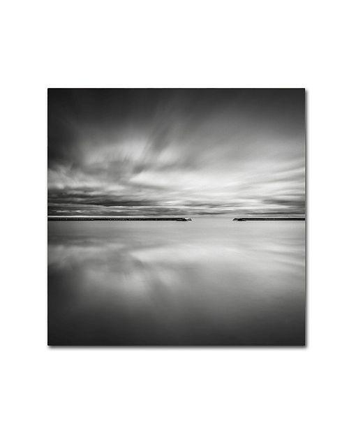 "Trademark Global Dave MacVicar 'Double Vision' Canvas Art - 35"" x 35"" x 2"""