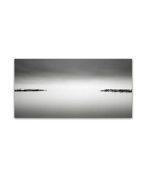 "Trademark Global Dave MacVicar 'Symmetry' Canvas Art - 47"" x 24"" x 2"""