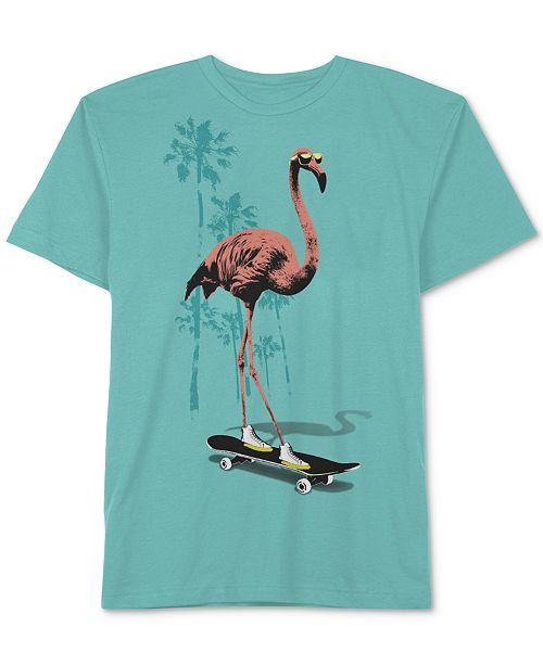Jem Big Boys Flamingo Skate T-Shirt