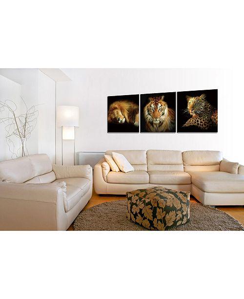 Decor Wild Safari 3 Piece Wred Canvas Wall Art Felines 16 X 48