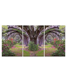 "Decor Lavender Cherry 3 Piece Wrapped Canvas Wall Art Garden -27"" x 60"""