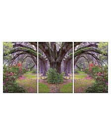 "Chic Home Decor Lavender Cherry 3 Piece Wrapped Canvas Wall Art Garden -27"" x 60"""