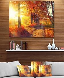 "Designart 'Autumnal Trees In Sunrays' Large Landscape Metal Wall Art - 40"" X 30"""