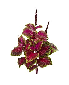 "23"" Coleus Bush Artificial Plant (Set of 6)"