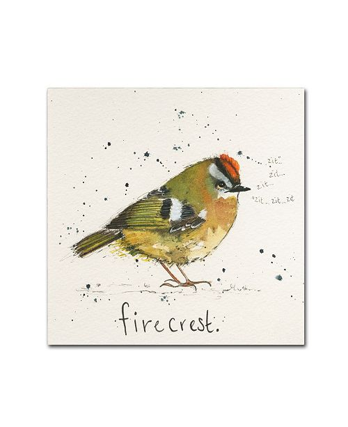 """Trademark Global Michelle Campbell 'Firecrest' Canvas Art - 24"""" x 24"""" x 2"""""""