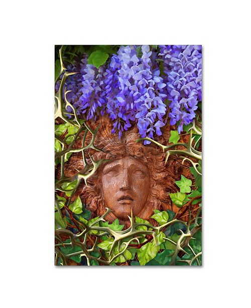 "Trademark Global Tina Lavoie 'Secret Garden' Canvas Art - 19"" x 12"" x 2"""