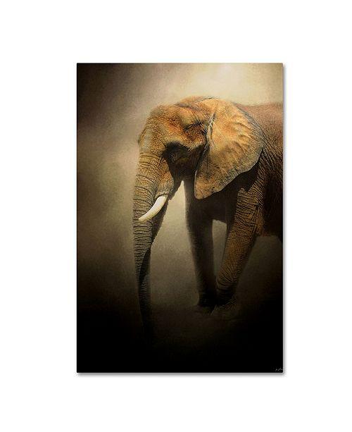 "Trademark Global Jai Johnson 'The Elephant Emerges' Canvas Art - 19"" x 12"" x 2"""