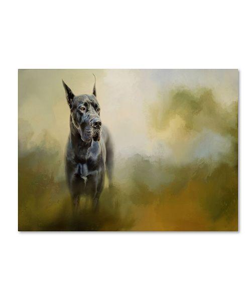 "Trademark Global Jai Johnson 'Wistful Dane' Canvas Art - 19"" x 14"" x 2"""