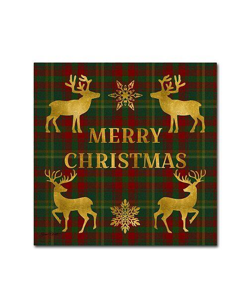 "Trademark Global Jean Plout 'Merry Christmas Plaid 6' Canvas Art - 35"" x 35"" x 2"""