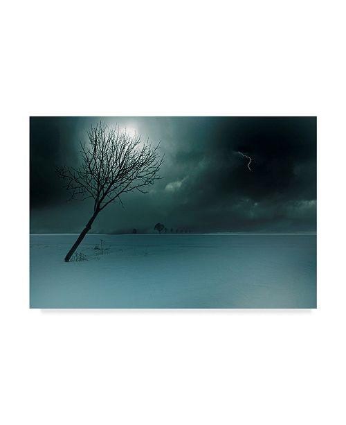 """Trademark Global Nicolas Schumacher 'Wintergewitter' Canvas Art - 47"""" x 2"""" x 30"""""""