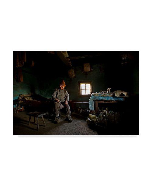 "Trademark Global Mihnea Turcu 'From The Fairy Tale' Canvas Art - 47"" x 2"" x 30"""