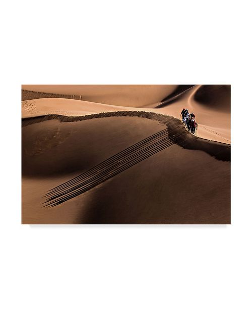 "Trademark Global Mohammadreza Momeni 'Parallel Deserts' Canvas Art - 32"" x 2"" x 22"""