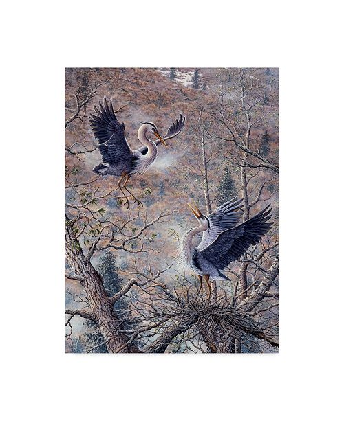"Trademark Global Jeff Tift 'Nesting Time Great Blue Herons' Canvas Art - 24"" x 18"" x 2"""