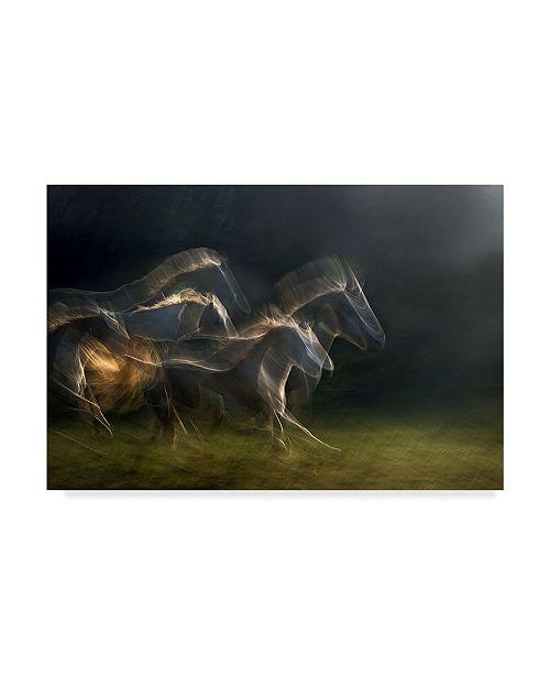 "Trademark Global Milan Malovrh 'Echoing In Motion' Canvas Art - 19"" x 2"" x 12"""
