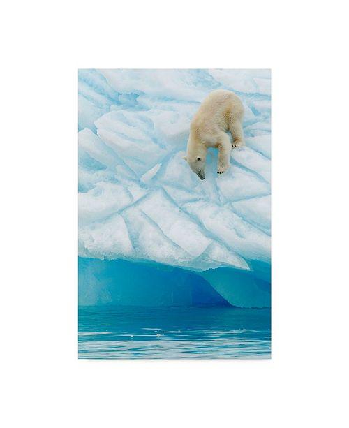 "Trademark Global Joan Gil Raga 'Polar Bear Vertigo' Canvas Art - 30"" x 2"" x 47"""