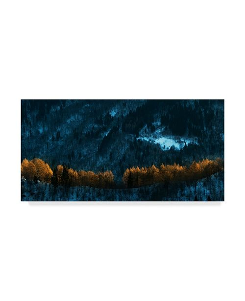 "Trademark Global Nafets Norim 'Defensive Line' Canvas Art - 32"" x 2"" x 16"""