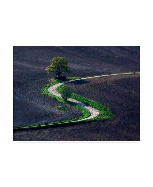"Trademark Global Zdeno Kostka 'Field Road' Canvas Art - 47"" x 2"" x 35"""