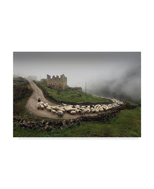 "Trademark Global Mustafa Zengin 'Sheep Herder' Canvas Art - 47"" x 2"" x 30"""