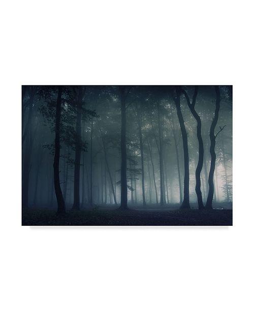"Trademark Global Photocosma 'Mysterious Dark Forest' Canvas Art - 47"" x 2"" x 30"""