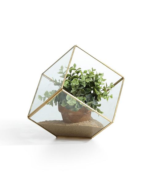 "Danya B 7"" Cube Brass and Glass Terrarium"