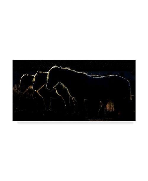 "Trademark Global Michel Romaggi 'Horses Silhouettes' Canvas Art - 24"" x 12"" x 2"""