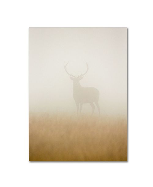 "Trademark Global Stuart Harling 'Ghost Stag' Canvas Art - 19"" x 14"" x 2"""