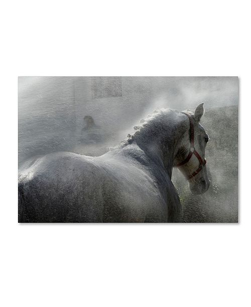 "Trademark Global Milan Malovrh 'Gramy' Canvas Art - 32"" x 22"" x 2"""