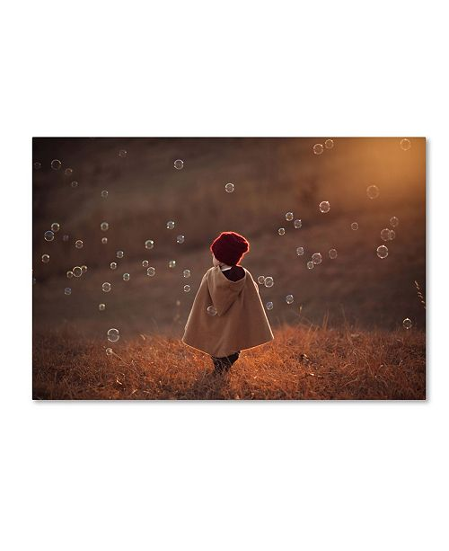 "Trademark Global Jake Olson 'Symphony' Canvas Art - 32"" x 22"" x 2"""