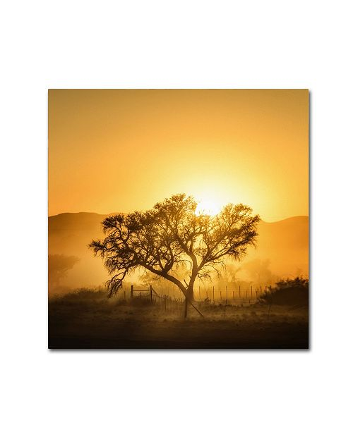 "Trademark Global Piet Flour 'Golden Sunrise' Canvas Art - 18"" x 18"" x 2"""