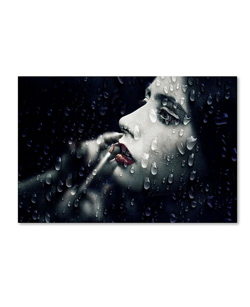 "Trademark Innovations Paulo Abrantes 'Through The Looking Glass' Canvas Art - 32"" x 22"" x 2"""