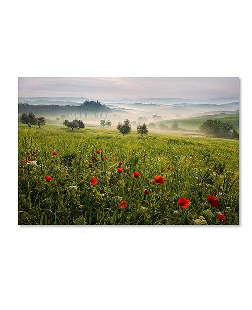 "Trademark Global Daniel Rericha 'Tuscan Spring' Canvas Art - 19"" x 12"" x 2"""