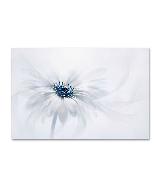 "Trademark Global Jacky Parker 'Serenity' Canvas Art - 19"" x 12"" x 2"""