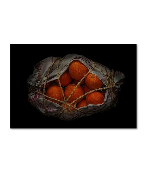 "Trademark Global Secundino Losada 'Orange On Black' Canvas Art - 32"" x 22"" x 2"""