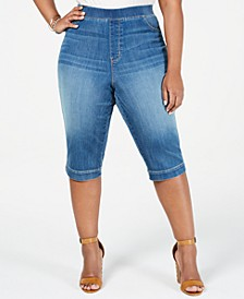 Lucy Plus Size Skimmer Jeans