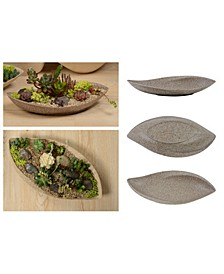 Eco Modern Planter Tray with Succulent Cactus Leaf Plant Bowl Pot