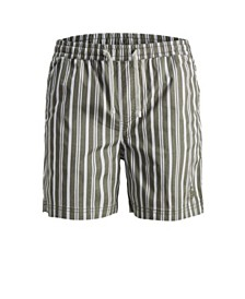 Jack & Jones Men's Striped Beach Shorts