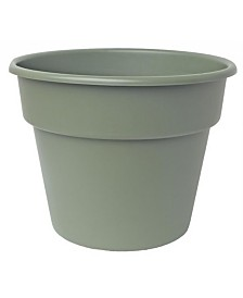 "Bloem 6"" Dura Cotta Planter"