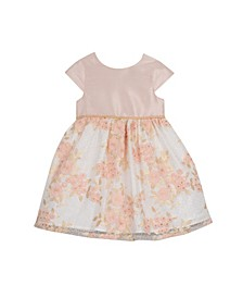 Little Girl Cap Sleeve Embroidered Party Dress