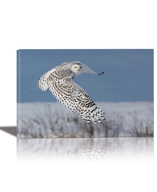 Eurographics Snowy Owl Framed Canvas Wall Art