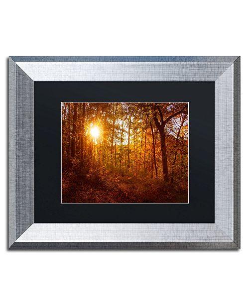 """Trademark Global PIPA Fine Art 'Autumn Sunset' Matted Framed Art - 11"""" x 14"""""""
