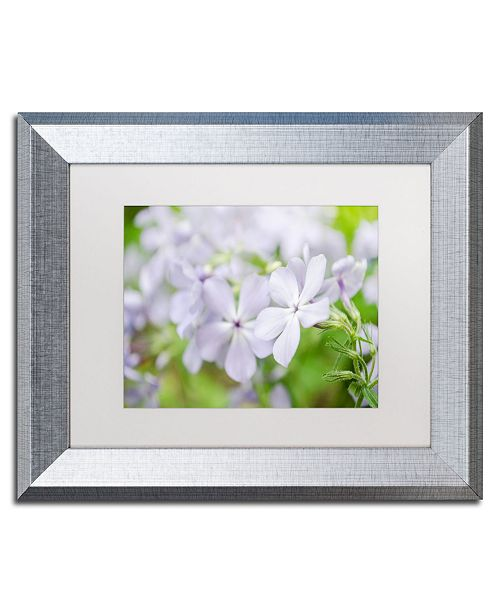 "Trademark Global PIPA Fine Art 'Soft Focus Phlox Carolina' Matted Framed Art - 11"" x 14"""