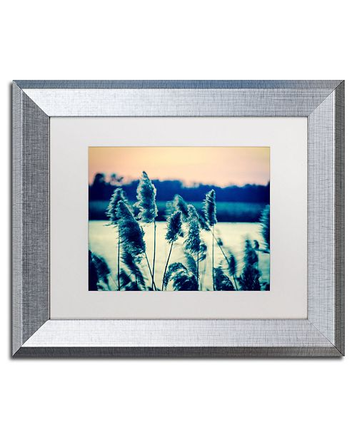 """Trademark Global PIPA Fine Art 'Sunset on the Marsh 2' Matted Framed Art - 11"""" x 14"""""""