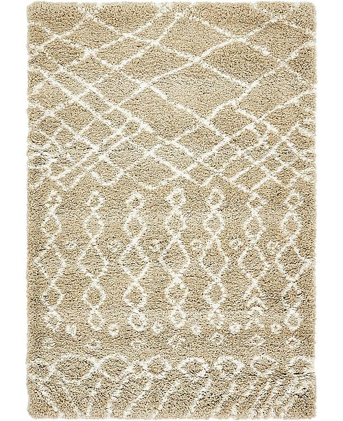 Bridgeport Home Fazil Shag Faz2 Tan 4' x 6' Area Rug