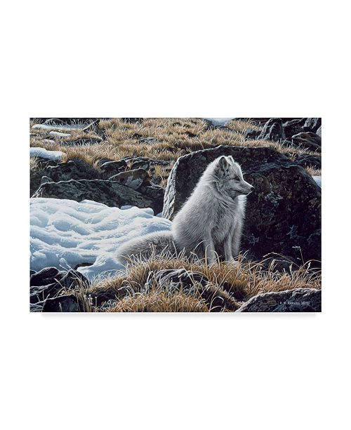 """Trademark Global Ron Parker 'Northern Morning' Canvas Art - 16"""" x 24"""""""