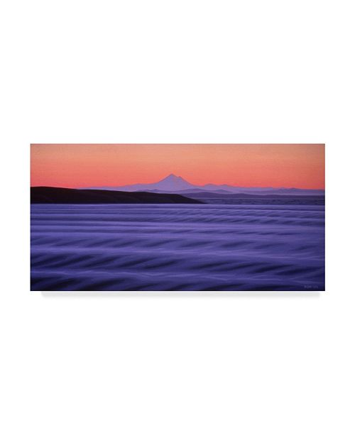 "Trademark Global Ron Parker 'Oak Bay Dawn' Canvas Art - 16"" x 32"""