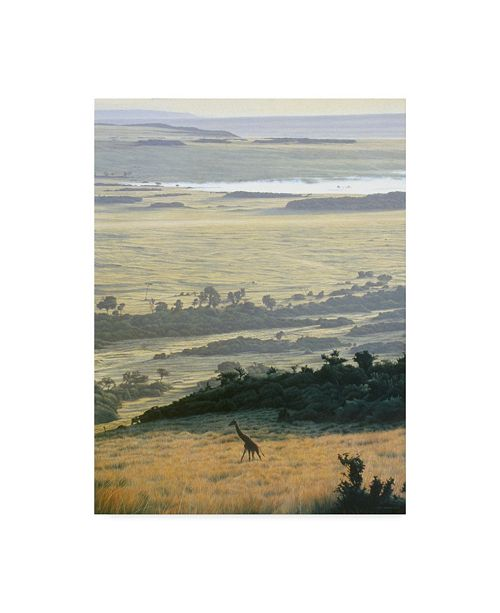 "Trademark Global Ron Parker 'Morning On The Mara' Canvas Art - 18"" x 24"""